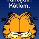 Garfield,garfield... :)