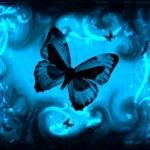 pic_butterflyeffect.jpg