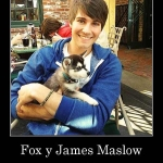 james and fox