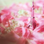 art-beautiful-beauty-cute-eiffel-tower-Favim.com-414874_large.jpg