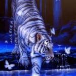 tigris2.jpg