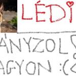 Lédiii......ő a kutyusom csak már elment örökre.....:(((( :( :'(( :'(