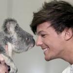 Louis of One Direction meets a koala bear.jpg