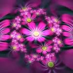 virágok.jpg