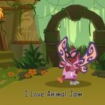 AnimalJam_3.jpg