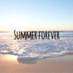 summer forever.jpg