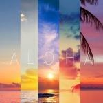 Aloha-wallpaper-10912173.jpg