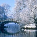 4_hi_res_winter_wallpapers_011.jpg