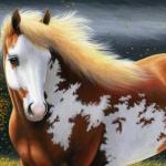 lovas háttér 1.jpg