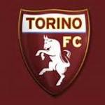 toro99.jpg