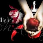 Twilight_Saga_twilight_series_6147313_800_600_1_.jpg